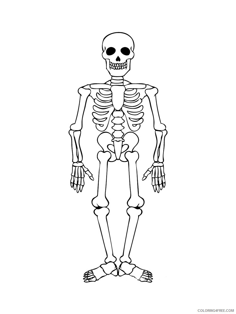 skeleton pictures for kids to color