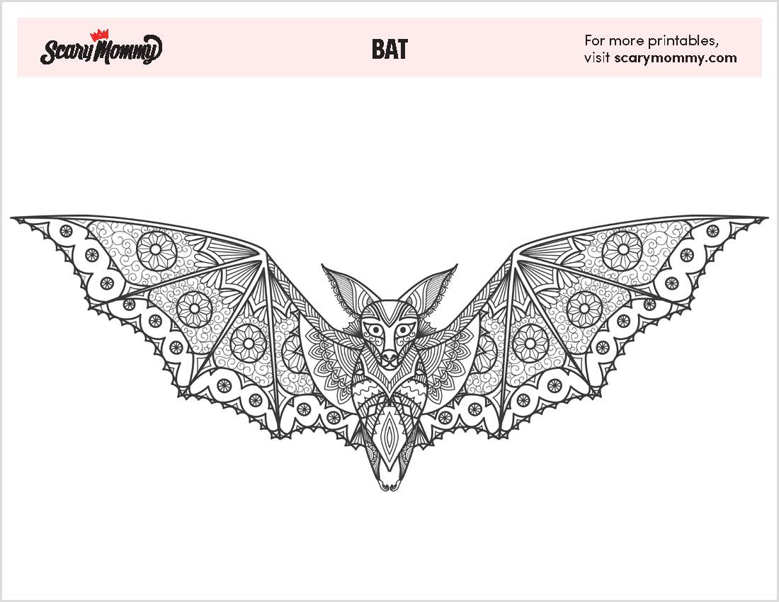 coloring page of a bat