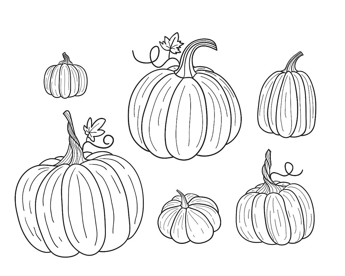 colouring pictures of pumpkins