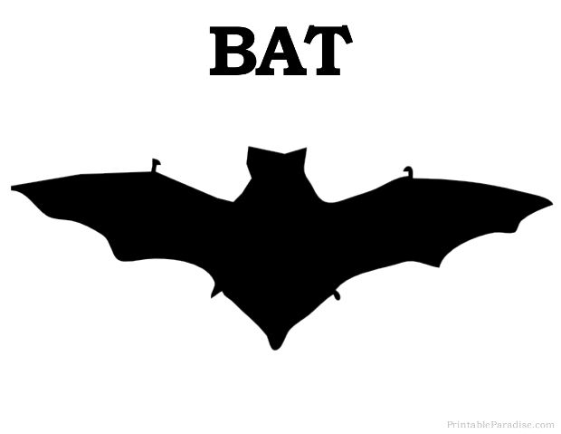 bat pictures to print
